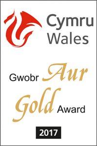 Visit Wales Gold Award 2017